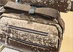 WHY DO MOLD GROW ON LEATHER GOODS