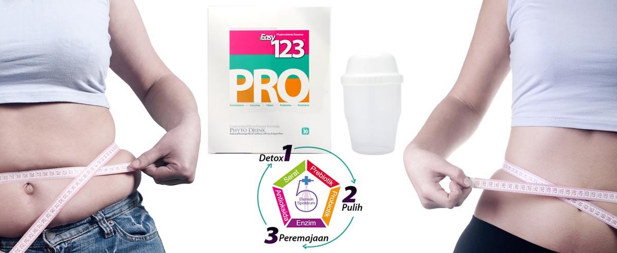 Easypro 123
